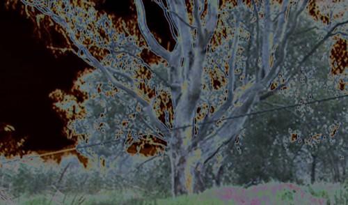 hero_image_ACMImediatheque